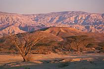 Désert du Negev, ref ea1135-01GE