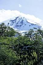 Patagonie, ref ea3187-01LE