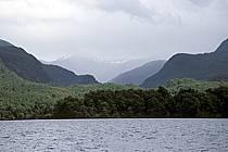 Patagonie, ref ea3201-04LE