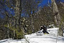 Ski de randonnée au Cerro Lopez, Bariloche, Patagonie, ref eb054949GE
