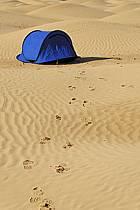 Désert du Sud Tunisien, au sud de Douz, Traces de pas et bivouac dans les dunes de sable, ref eb063695GE