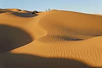 Désert du Sud Tunisien, au sud de Douz, Bivouac dans les dunes de sable, ref eb063697GE