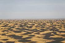 Désert du Sud Tunisien, au sud de Douz, Méharée dans les dunes de sable, ref eb063702GE