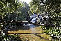 Cascades de Dankaran, dans le massif de Molota - Dankaran waterfalls, in the Molota massif, ref eb072539GE