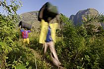 Trek entre Yembérulé et Dallonyah, porteurs - Trek from Yemberule to Dallonyah, porters, ref eb072713GE