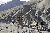 Trek en direction du col de Stok, Ladakh - Trek to Stok pass, Ladakh, ref eb081658LE