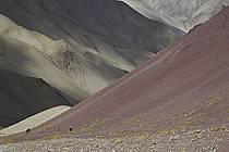 Trek en direction du col de Stok, Ladakh - Trek to Stok pass, Ladakh, ref eb081674GE