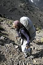 Trek Maroc, ref eb3143-20GE