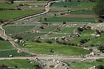 Trek Maroc, ref eb3161-31GE