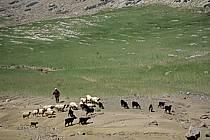 Trek Maroc, ref eb3165-05GE
