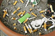 Cigarette butts in a dirty ashtray, ref ee090005LE