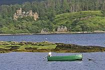 Plokton, Highlands, Highlands, Ecosse, ref ee2063-35LE