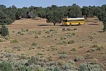 School bus, ref ef0657-08LE