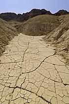 Sécheresse dans la réserve naturelle de Mujib, près de la Mer Morte, ref fa070531LE