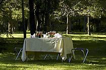 Table de repas champêtre après un orage - Outdoor dining table after a storm, ref fb072394LE
