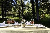 Table de repas champêtre après un orage - Outdoor dining table after a storm, ref fb072396LE