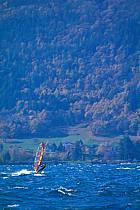 Funboard, Lac d'Annecy, Haute-Savoie, ref gd2103-17GE